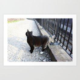 Railway Cat Observing Art Print