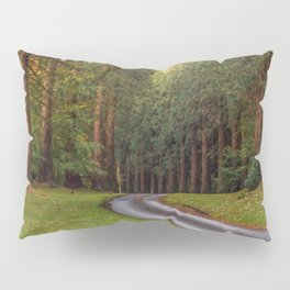 redwood trees Pillow Sham