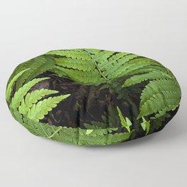 framed fern Floor Pillow