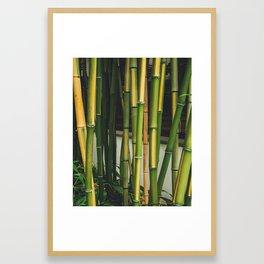 Bamboo Wall Framed Art Print