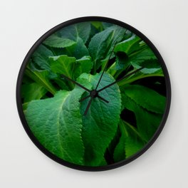 GREEN COMFREY LEAVES Wall Clock