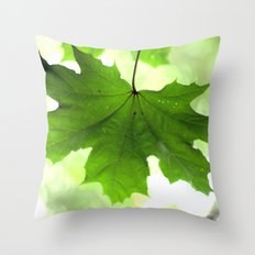 Acer Leave  4356 Throw Pillow