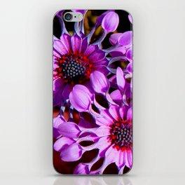 Purple Whirligig - Phoenix iPhone Skin
