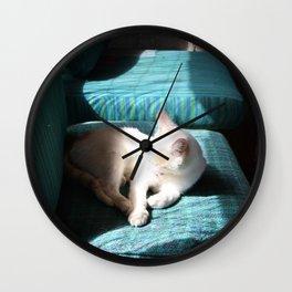 Cat In The Sun Wall Clock