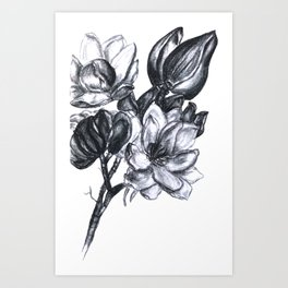 flowers in bloom Art Print