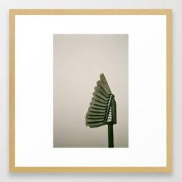 Faned out Framed Art Print