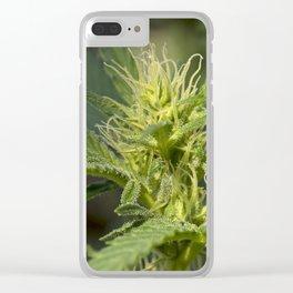 Cannabis Flower Bud Clear iPhone Case