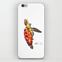 turtle iPhone & iPod Skins featuring Turtle by Alexander Cox