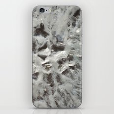 Crystal 1 iPhone & iPod Skin