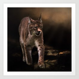 Into The Light - Lynx Art Art Print