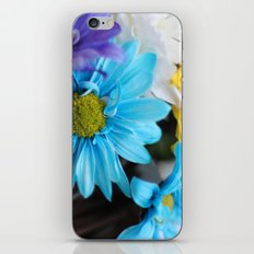 Gerbera daisy Flowers  iPhone & iPod Skin
