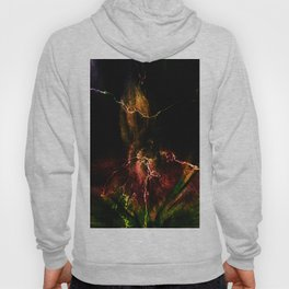 Concept abstract : Anno flore amet Hoody