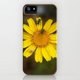 Wild nature iPhone Case