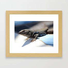 Canarian reptile Framed Art Print