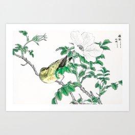 Antique Japanese Woodblock Print Art By Numata Kashu - Bulbul And Rosa Rugosa Flowers Art Print