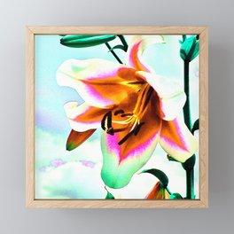 Wild Lilly Framed Mini Art Print