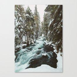 The Wild McKenzie River Portrait - Nature Photography Canvas Print