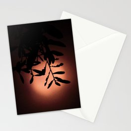 Coral Moon Stationery Cards