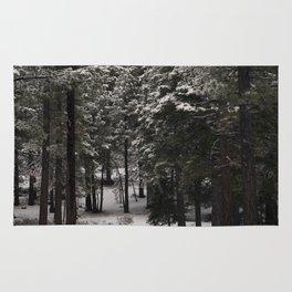 Carol Highsmith - Snow Covered Trees Rug