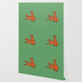 Vizslas on Green Wallpaper