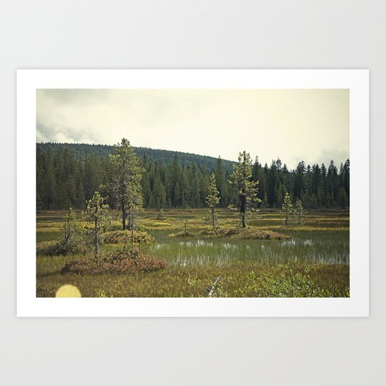 Four Mile Meadow 02 Art Print