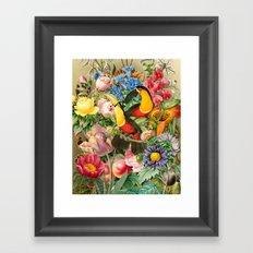 Toucans Framed Art Print