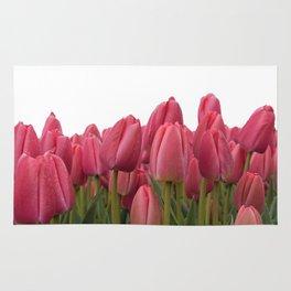 Tulips Field #7 Rug