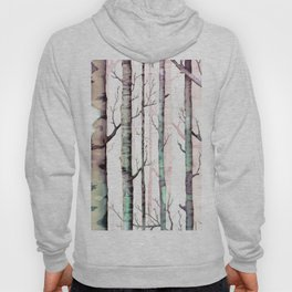 Birch Trees Forest Hoody
