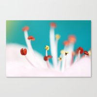 cherry blossom Canvas Prints featuring Cherry Blossom by Sharon Johnstone