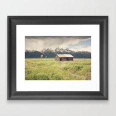Summer in the Tetons Framed Art Print