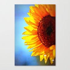 Arise and Shine Canvas Print
