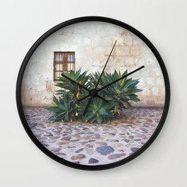 Succulents in the Monastery Courtyard, Arequipa, Peru Wall Clock