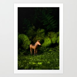 A Small Brown Horse in the Valley Art Print