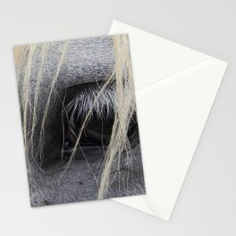 eye of the horse Stationery Cards