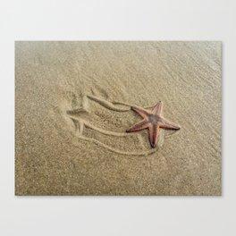 Shooting Sea Star Canvas Print