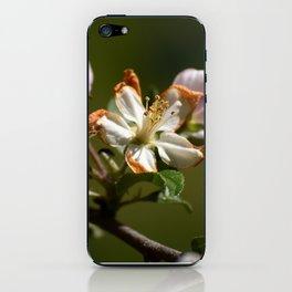 Wilting Apple Blossom iPhone Skin