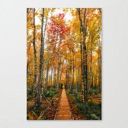Acadia Autumn Canvas Print