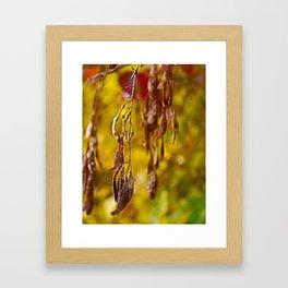 autumn leafs Framed Art Print