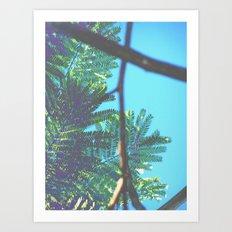 breezy beautiful  Art Print