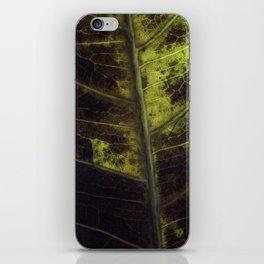 Leaf Eight iPhone Skin