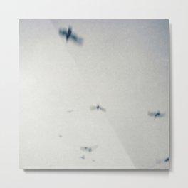Swift Birds of Passage Metal Print