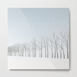 With the Spirit of the Trees Metal Print