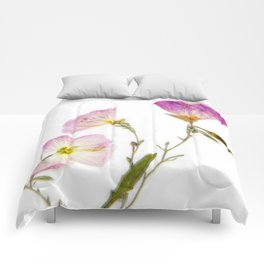 Primrose Comforters