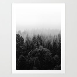 Forest, Black and White Art Print