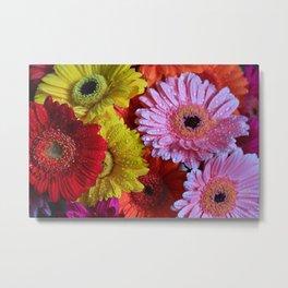 Colorful Gerbera's Metal Print