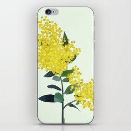 Acacia iPhone Skin