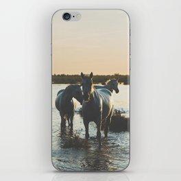 Camargue Horses III ... iPhone Skin