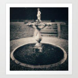 The fountain Art Print