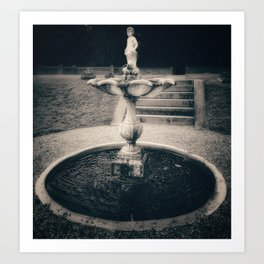 The fountain Art Print