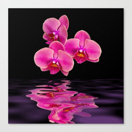 Mystical Pink Orchids Reflections Canvas Print